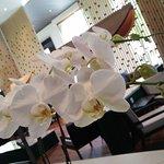 My fav orchid :-)