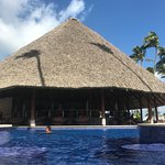 Barcelo Bavaro Beach - Adults Only Foto
