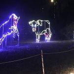 Christmas at Acadian Village