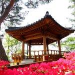 봄꽃이 만발한 청남대 오각정
