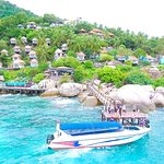 One day snorkeling trip by speed boat