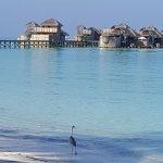 Gili Lankanfushi Maldives Foto