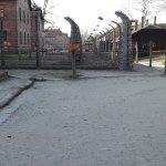 Photo of Auschwitz-Birkenau State Museum