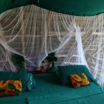 Chumbe Island Coral Park - my hut bedroom area (upper level)