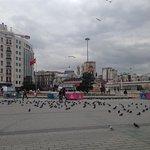 birds of park