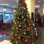 Zdjęcie Qubus Hotel Kielce