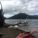 Foto de Pura Vida Patagonia Kayaking