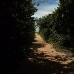Photo of Paulo Cesar Vinha State Park