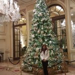 The Palm Court Photo