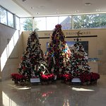 In the arrival hall beautiful Christmas trees