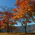 十和田湖の写真