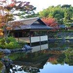 Japanese Garden view (1)