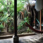 صورة فوتوغرافية لـ Hostel Oasis