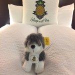 Hotel FIVE - A Staypineapple Hotel