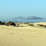 Humankind Fuerteventura Nature & Wildlife
