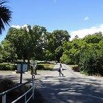 Hagley Park Foto