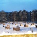 Dog yard in Engholm