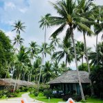 Bild från Nikki Beach Resort & Spa