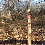 Richland Community Center Trails