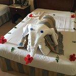 Foto di Stella Di Mare Beach Resort & Spa Makadi Bay