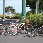 Bike rentals for our guests!
