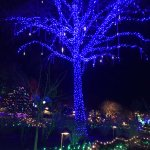 Magical holiday lights at The Butchart Gardens in Victoria