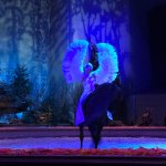Swan Lake horse show and ballet