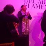 Foto de Casa del Arte Flamenco