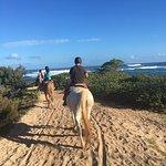 Foto de Turtle Bay Resort Horse Riding