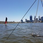 sailing the catamaran on the river