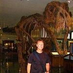 Photo de Natural History Museum