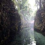 Jungle boat ride