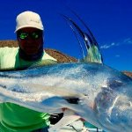 Tailhunter International Sportfishing의 사진