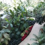 View from the 4th floor balcony in the St. Augustine atrium.