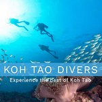 Photo of Koh Tao Divers