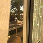 Photo of Hotel Premium Campinas