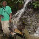 Photo of Tobago Forest Reserve