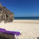 Foto de Paradisus Palma Real Golf & Spa Resort