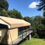 Silk Pavilions Foto