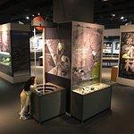 Foto Museum Sains Toyama