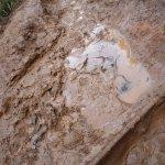 Very muddy in December!