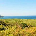 Photo de Tico Tours Guanacaste