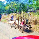 Discover hidden places with Buggy Tours