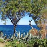 Foto de Iberostar Creta Panorama & Mare
