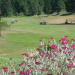 View from the flower beds near Pro Shop with No. 9 Fairway beyond.