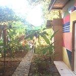 Foto de Bambu Hostel