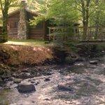 Foto di Rustic Log Cabins