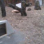 Photo de Zoo Knoxville