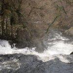 Looking downstream at Swallow Falls
