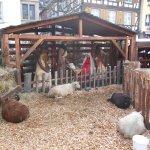 Photo de Restaurant du Mouton